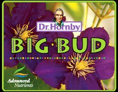 Advanced Nutrients Big Bud - 130 Grams