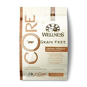 Wellness CORE Natural Grain Free Dry Cat Food, Original Turkey