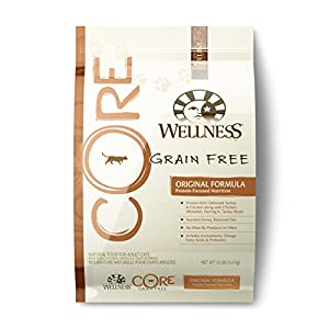 Wellness CORE Natural Grain Free Dry Cat Food, Fish and Fowl Recipe, 12-Pound Bag