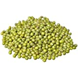 Sprouting Seeds Mung Bean 5 Pounds - Todd's Seeds