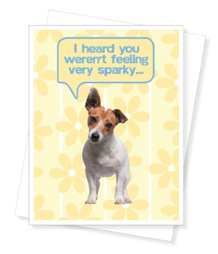 Popular get well cards for jack russell terrier get well greeting jack russell terrier get well greeting card m4hsunfo