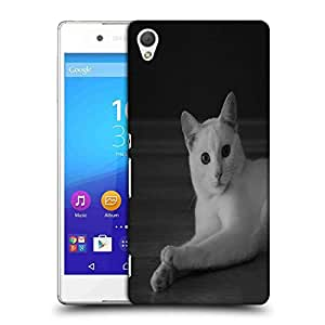 Snoogg Curious White Cat Designer Protective Phone Back Case Cover For HTC one A9