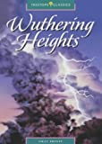 Oxford Reading Tree: Stage 16: TreeTops Classics: Wuthering Heights Emily Brontë