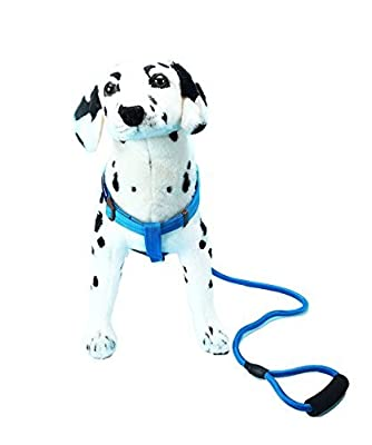 Dog Harnesss and leash-Dog No pull ,Heavy duty,Training,Walking,Running leash harness for Large/Medium/Small dogs