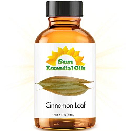 Cinnamon Leaf (2 fl oz) Best Essential Oil - 2 ounces (59ml)