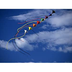 Tandem Kites Photographic Poster Print