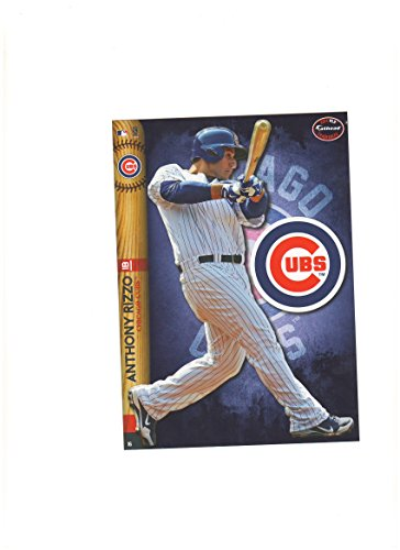 Chicago Cubs Mini Felt Pennant & Anthony Rizzo Mini Fathead 2014 - 1