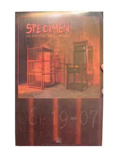 Specimen Poster Electric Ballroom Jonny Slut