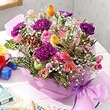 翌日配達お花屋さん 小鳥のさえずりが聞こえてきそう。お花畑で自由に気ままに飛び回る小鳥をイメージしました【送料無料】幸せを願うカーネーション・ハミングバード(ムーンダストカーネーションアレンジメント) 誕生日・記念日・お祝い・結婚祝い・お見舞い・歓送迎会・結婚祝いお礼の花の配達便