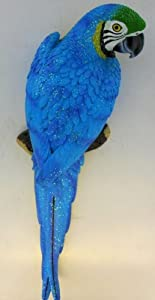 Blue Parrot Tropical Indoor Outdoor Wall Mounted Art Statue
