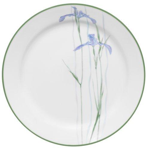 Corelle Impressions 10-1/4-Inch Dinner Plate, Shadow Iris