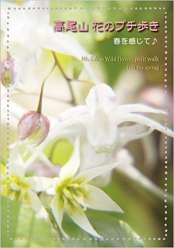 高尾山 花のプチ歩き 単行本 – 2013/3/27