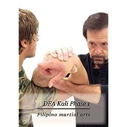 DFA Kali Phase 1