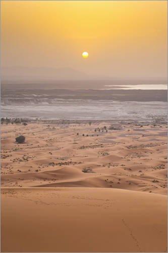 impression-sur-verre-acrylique-80-x-120-cm-erg-chebbi-sahara-desert-de-matthew-williams-ellis-robert