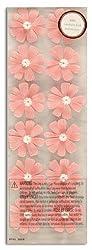 Martha Stewart Crafts 3 Dimensional Stickers Cosmos Pink