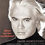 Where are you my Brothers?(Russian songs from the war)