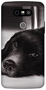 The Racoon Grip Puppy eyes hard plastic printed back case / cover for LG G5