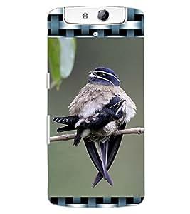 ColourCraft Cute Bird Design Back Case Cover for OPPO N1
