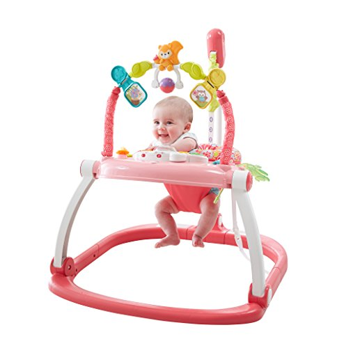 fisher-price-floral-confetti-spacesaver-jumperoo