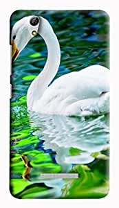 GADGETMATE Gionee Pioneer P5L Printed Back Cover(For Gionee Pioneer P5L )