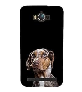 ifasho Designer Phone Back Case Cover Asus Zenfone Max ZC550KL :: Asus Zenfone Max ZC550KL 2016 :: Asus Zenfone Max ZC550KL 6A076IN ( Blue Colorful Pattern Design )