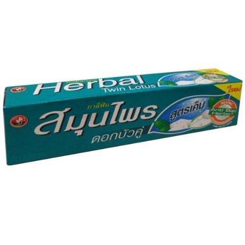 Twin Lotus Plus Salt Herbal Toothpaste 150G (5.3 Oz.) X 1 Tube Natural front-500254