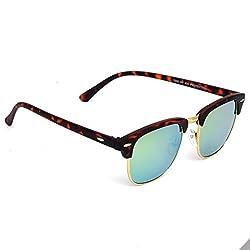 Eyeland Wayfarer Sunglasses