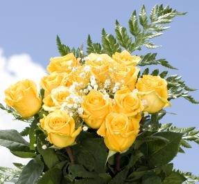 16 Dozen Assorted Color Roses & Fillers