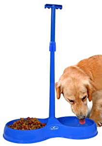 5 CUP CAPACITY NO BEND PET BOWL - SMALL