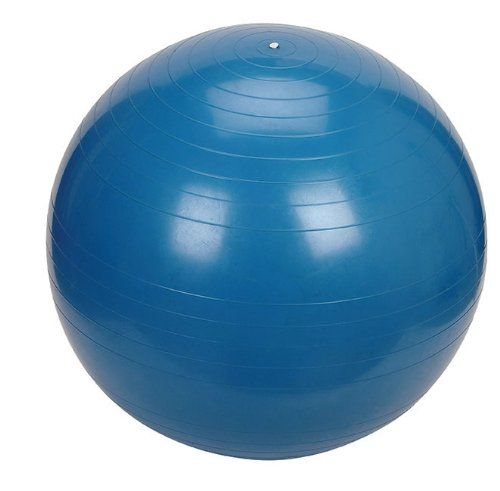 Gym Exercise Fitness Ball 65cm (Anti-Burst) with Dual Action Hand Pump & Travel Sack