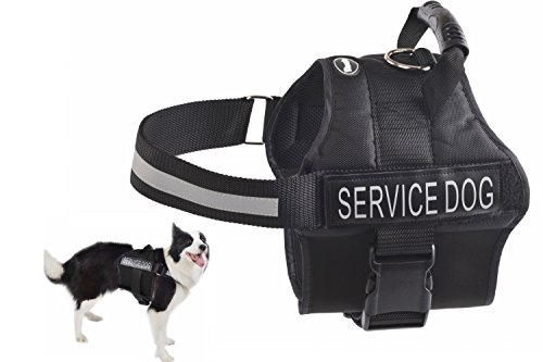 EXPAWLORER Anti Anxiety Stress Relief Service Dog Harness, Training Reflective Calming Adjustable Vest Harnesses Black Medium (Service Dogs Training compare prices)