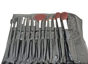 SHANY Professional 13-Piece Cosmetic Brush Set with Pouch, Set of 12 Brushes and 1 Pouch, Red by SHANY