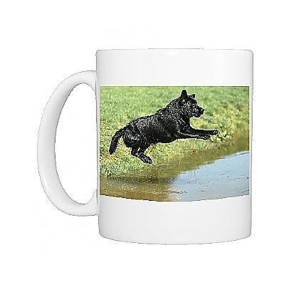 Photo Mug Of Dog - Black Labrador Retriever Jumping Into Water front-617365
