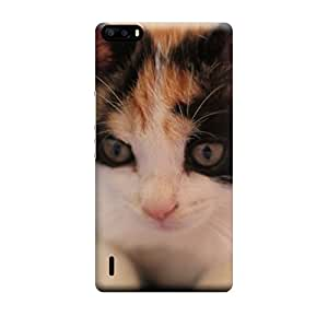 iShell Premium Printed Mobile Back Case Cover With Full protection For Huawei Honor 6 Plus (Designer Case)