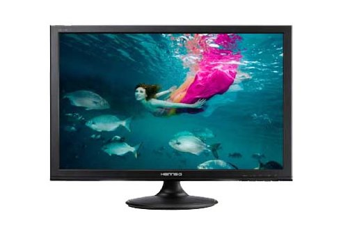 Hanns G HL198DPB 19 inch Widescreen LED Monitor (16:10, 1440 x 900, 5ms, 250 cd/m², VGA/DVI-D)