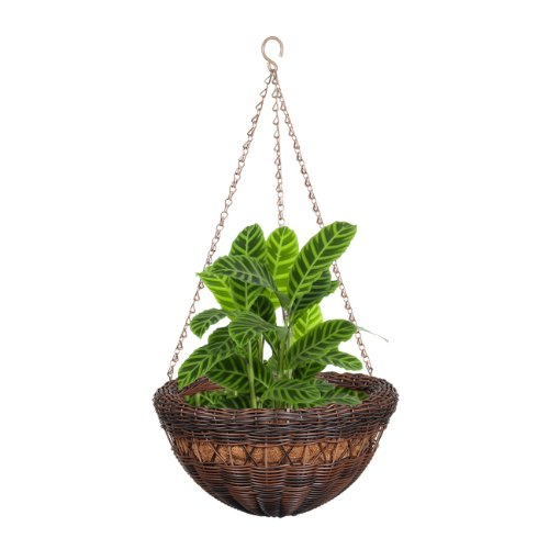 DMC Products 17-Inch Resin Wicker Hanging Basket with Chain Hanger, Antique Brown