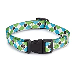 Casual Canine Nylon Pooch Pattern Dog Collar, 14 to 20-Inch, Blue Argyle