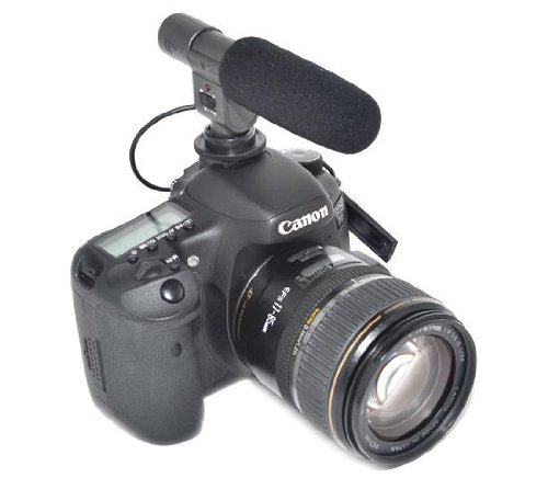 Professional Dv Stereo Microphone For Video Cameras & Dslr