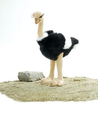 Plush Ostrich 12