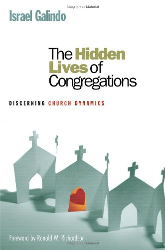 The Hidden Lives of Congregations: Discerning Church...