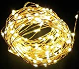 Innoo Tech Warm White 2m/6.5ft 20 LED Copper wire String Lights Battery Operated for XMAS Christmas Tree Wedding Outdoor Party
