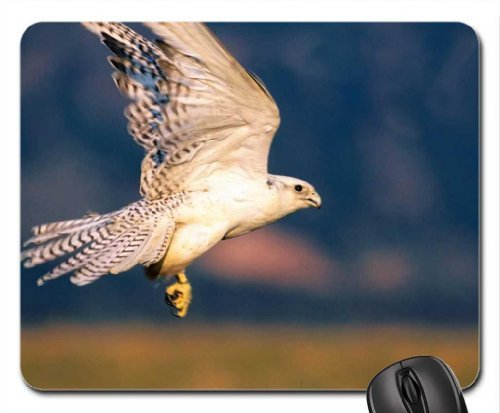 the-white-peregrine-falcon-mouse-pad-mousepad-birds-mouse-pad