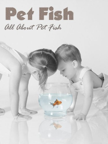 All About Pet Fish