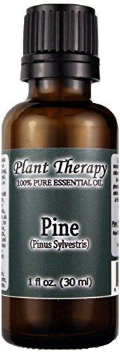 Pine Essential Oil. 30 Ml (1 Oz). 100% Pure, Undiluted, Therapeutic Grade.