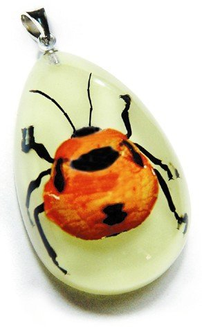 REALBUG Shield Bug Necklace, Glow in the Dark, Small