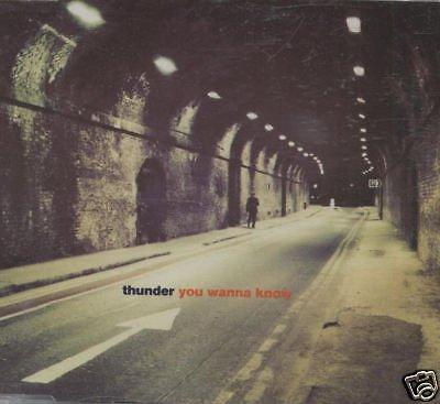 THUNDER CD Single- You wanna know(3 tracks)mint