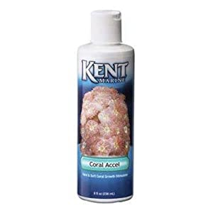 Kent Marine 00558 Coral Accel Hard and Soft Coral Growth Stimulator, 8-Ounce Bottle