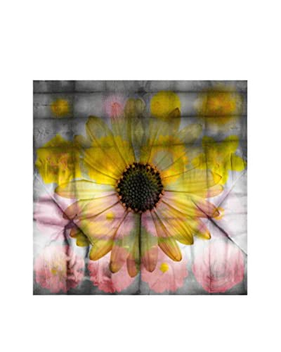 Parvez Taj Pink And Yellow Sunflower Canvas Wall Art