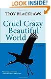 Cruel Crazy Beautiful World: A Novel