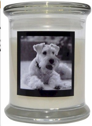 Aroma Paws 314 Breed Candle 12 Oz. Jar - Mini Schnauzer